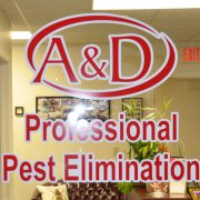 axi_signs_window_graphics